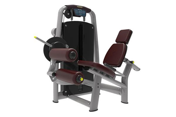 TZ-6055	Leg Curl and Extension Machine