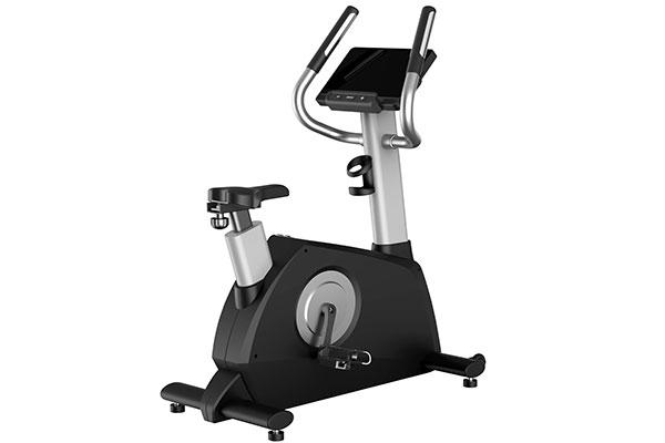 TZ-e2030A/B Commercial Upright Bike