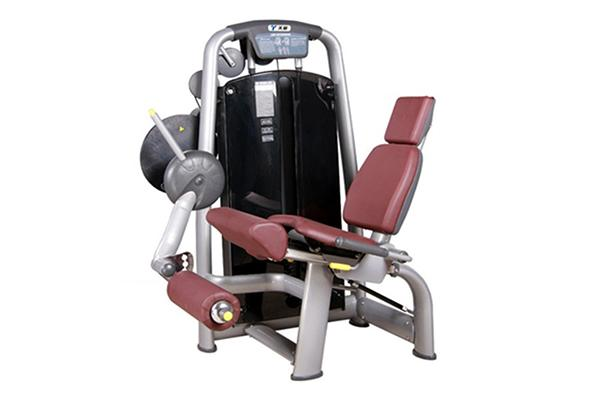 TZ-6002	Seated Leg Extension Machine