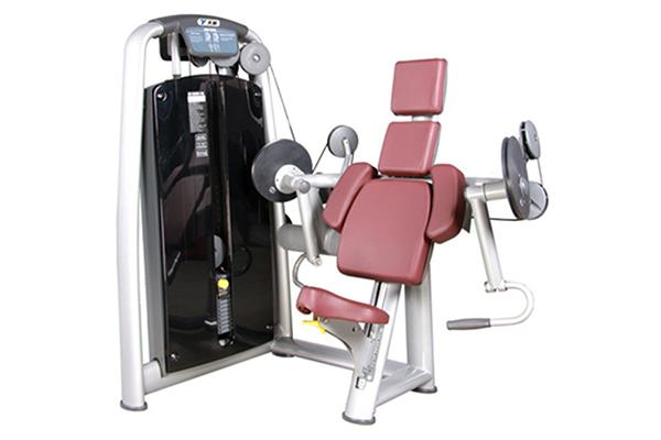 TZ-6013	Biceps Curl Machine