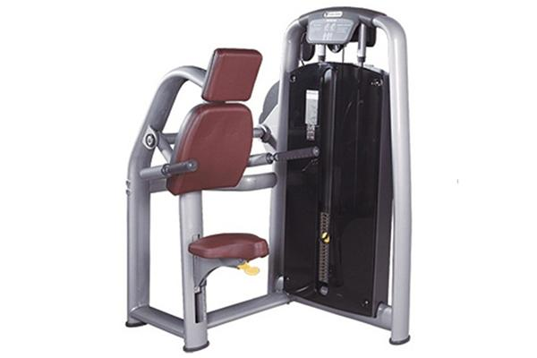 TZ-6050	Triceps Dip Machine