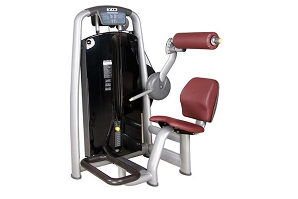 TZ-6006	Back Extension Machine