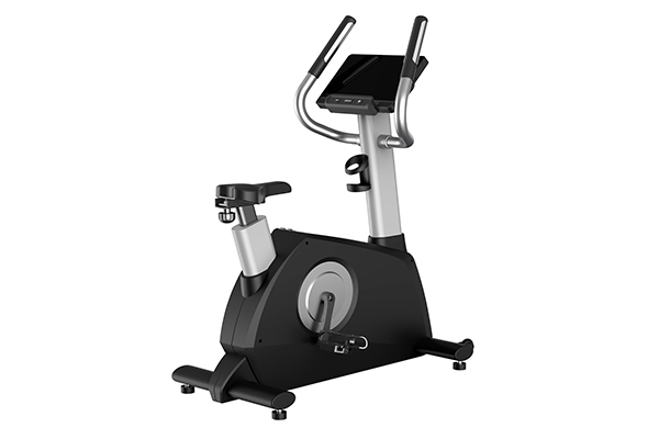 TZ-2030 Upright Bike